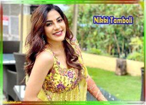 Nikki Tamboli Hot HD Photos